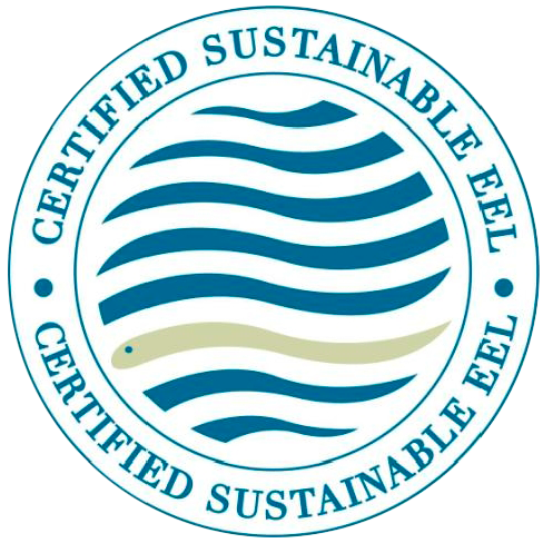 sustainable-eel
